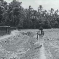 NIRMALAYAM / THE OFFERING (1973, India) Directed by M.T. Vasudevan Nair [Malayalam]